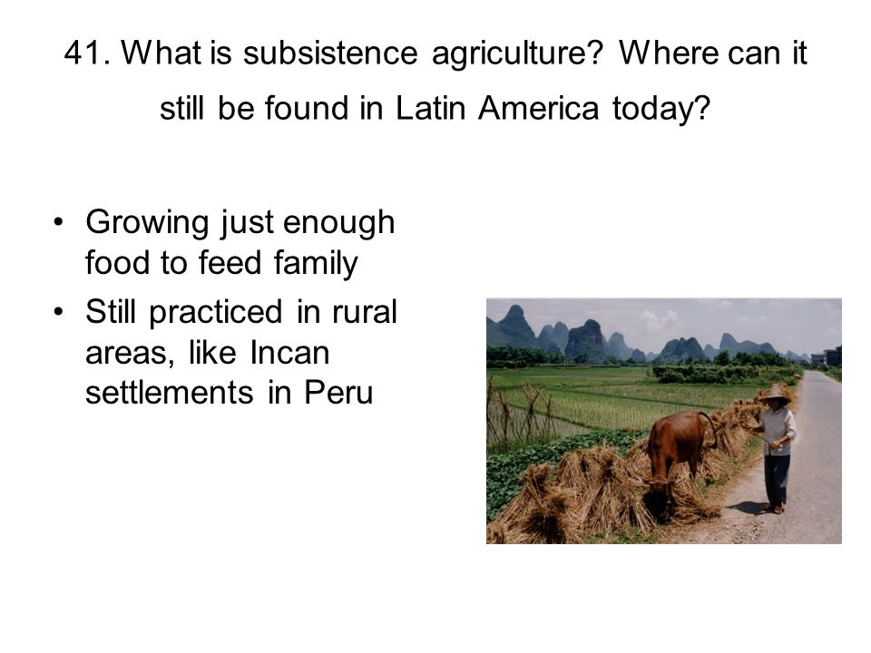 41. What is subsistence agriculture