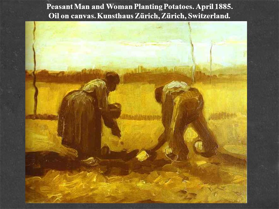 Peasant Man and Woman Planting Potatoes. April 1885. Oil on canvas