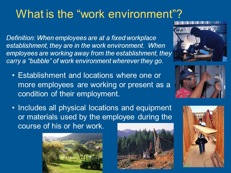 What is the work environment