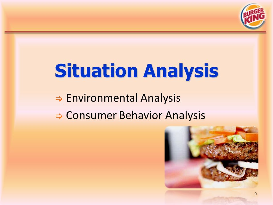 Environmental Analysis Consumer Behavior Analysis