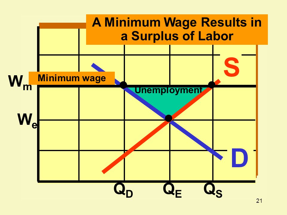 A Minimum Wage Results in a Surplus of Labor