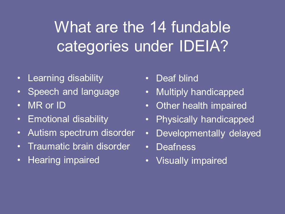 What are the 14 fundable categories under IDEIA