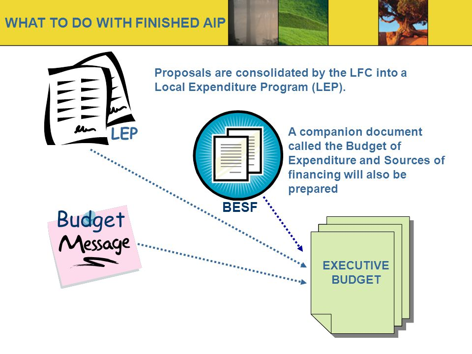 Budget LEP WHAT TO DO WITH FINISHED AIP BESF