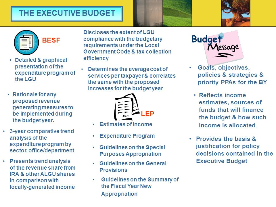 Budget THE EXECUTIVE BUDGET BESF LEP