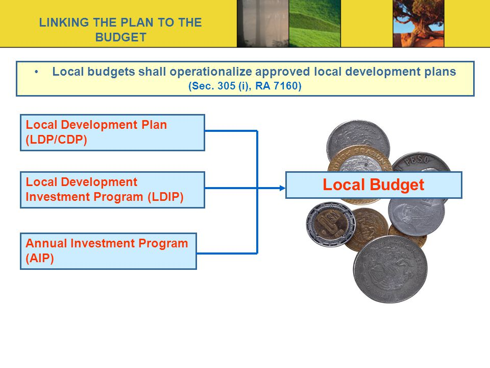LINKING THE PLAN TO THE BUDGET