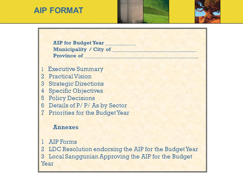 AIP FORMAT Practical Vision Strategic Directions Specific Objectives
