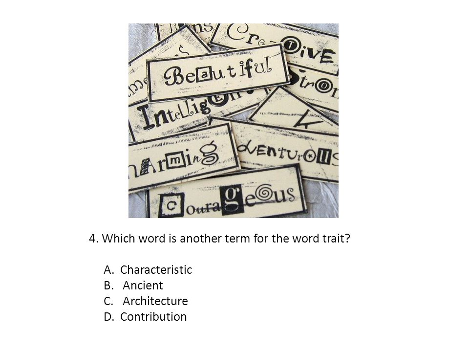 4. Which word is another term for the word trait