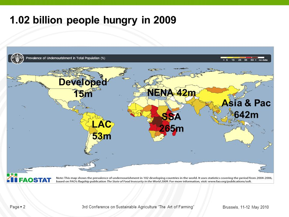 1.02 billion people hungry in 2009