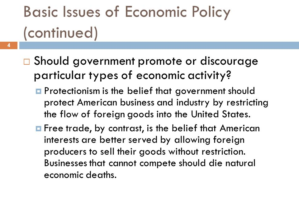 Basic Issues of Economic Policy (continued)