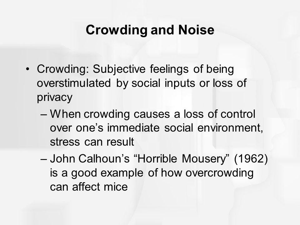 Crowding and Noise Crowding: Subjective feelings of being overstimulated by social inputs or loss of privacy.