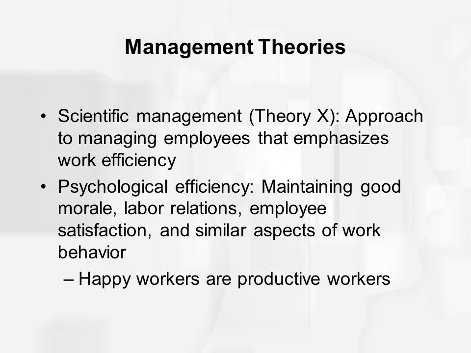 Management Theories Scientific management (Theory X): Approach to managing employees that emphasizes work efficiency.