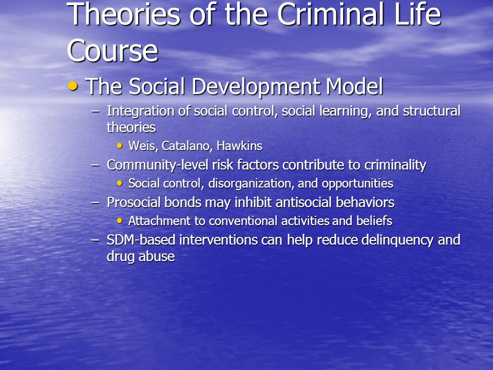Theories of the Criminal Life Course