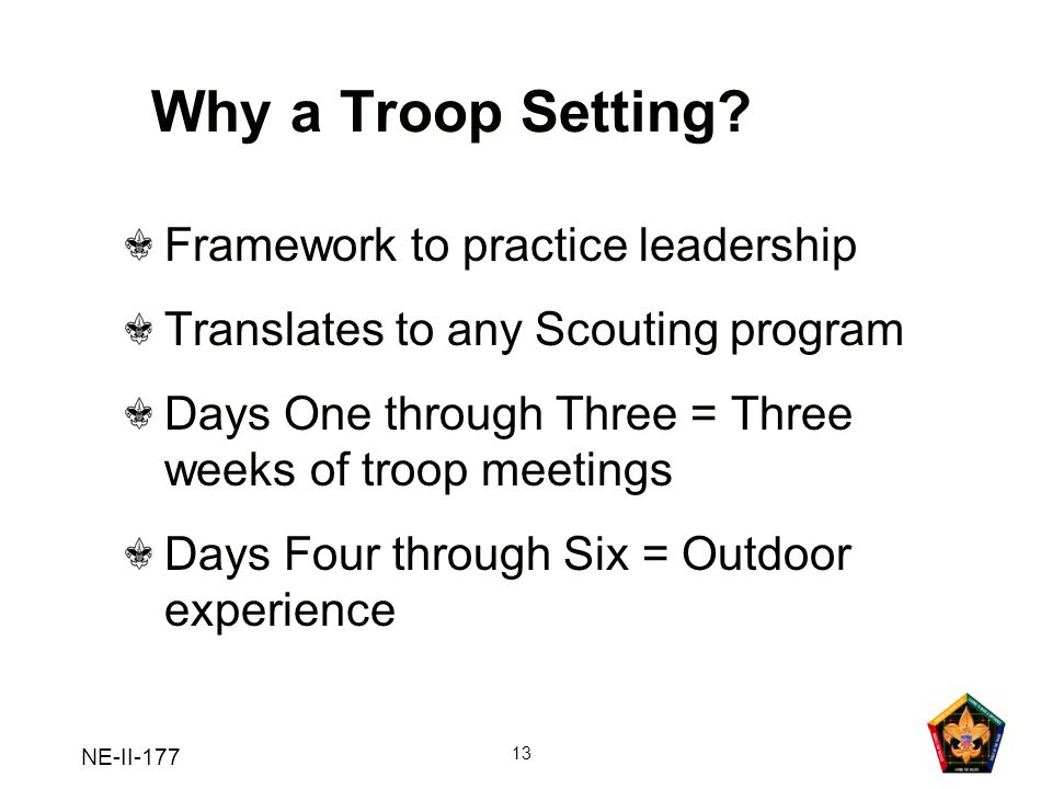 Why a Troop Setting Framework to practice leadership