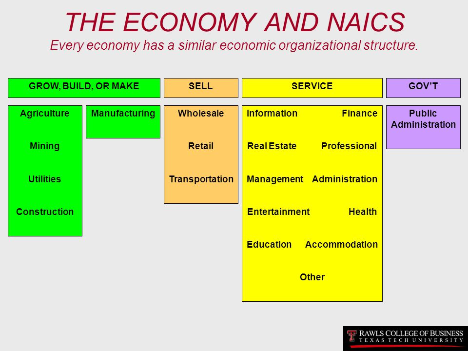 THE ECONOMY AND NAICS Every economy has a similar economic organizational structure.