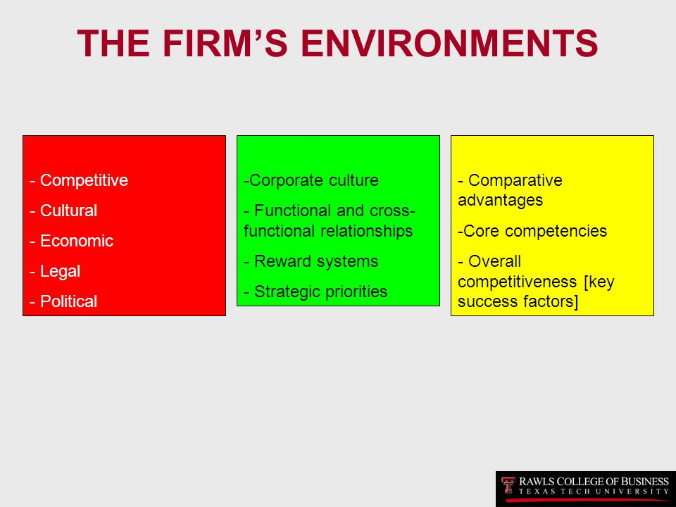 THE FIRM'S ENVIRONMENTS