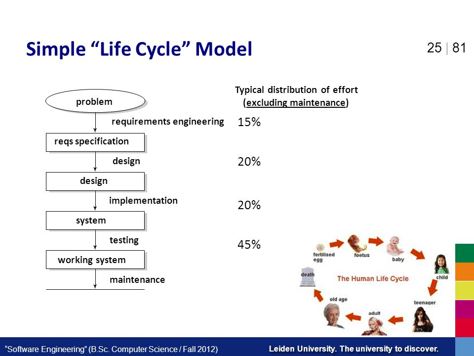 Simple Life Cycle Model