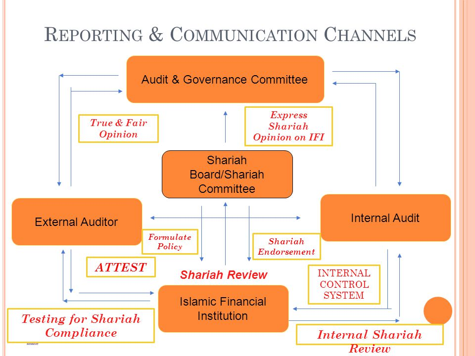Reporting & Communication Channels