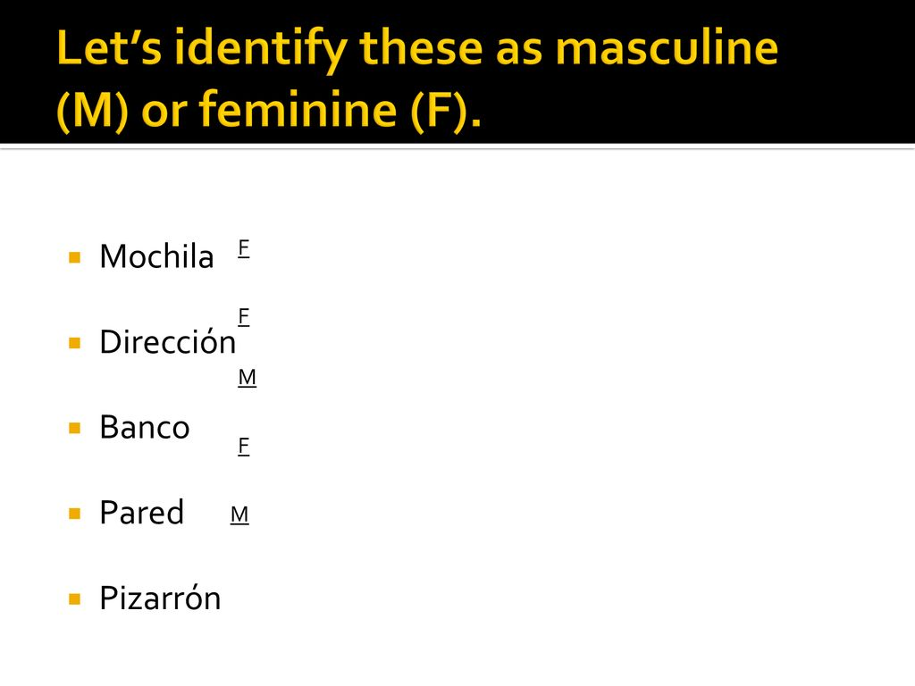 Gender Number And Articles In Spanish Ppt Download