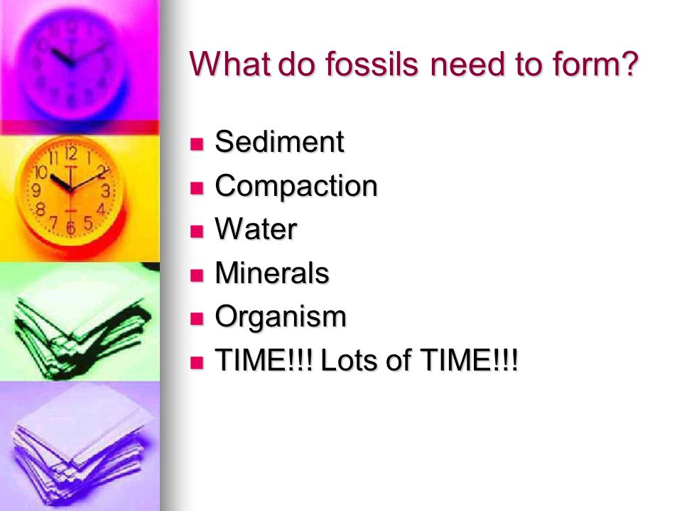 What do fossils need to form