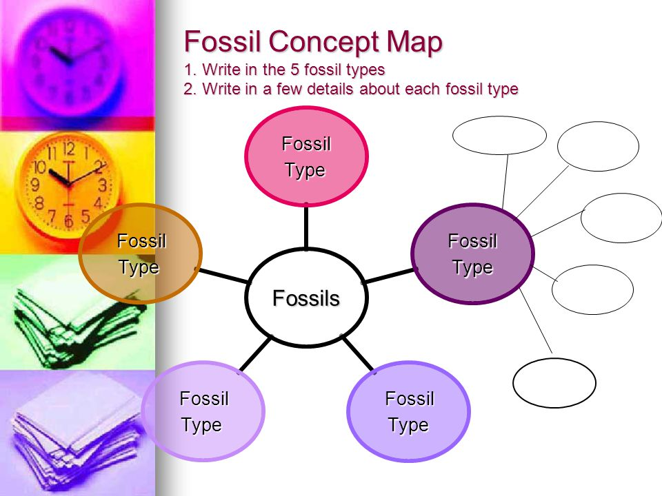 Fossil Concept Map 1. Write in the 5 fossil types 2