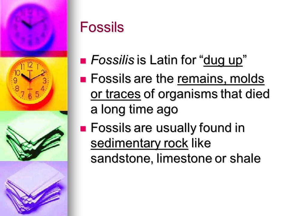 Fossils Fossilis is Latin for dug up
