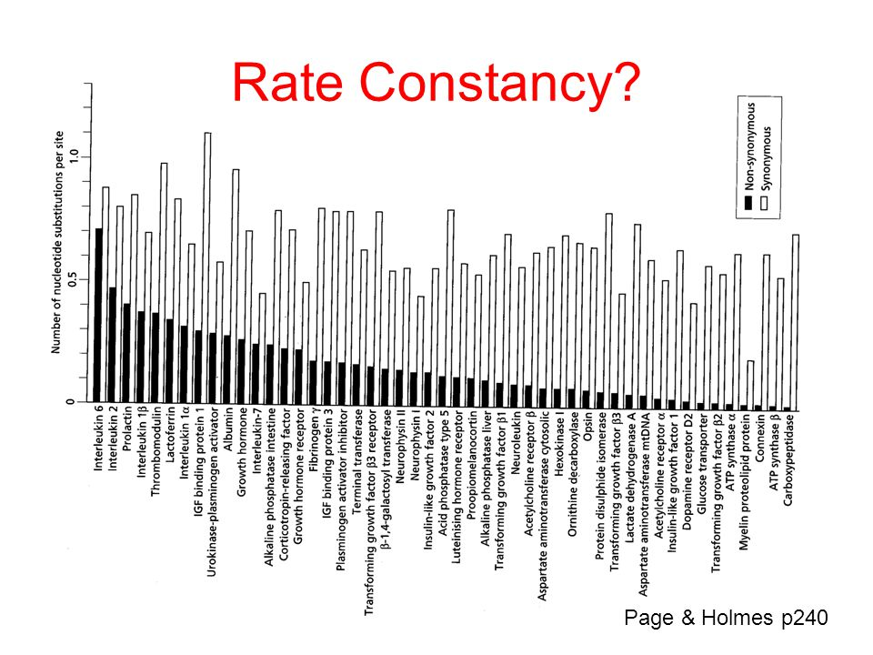 Rate Constancy Page & Holmes p240