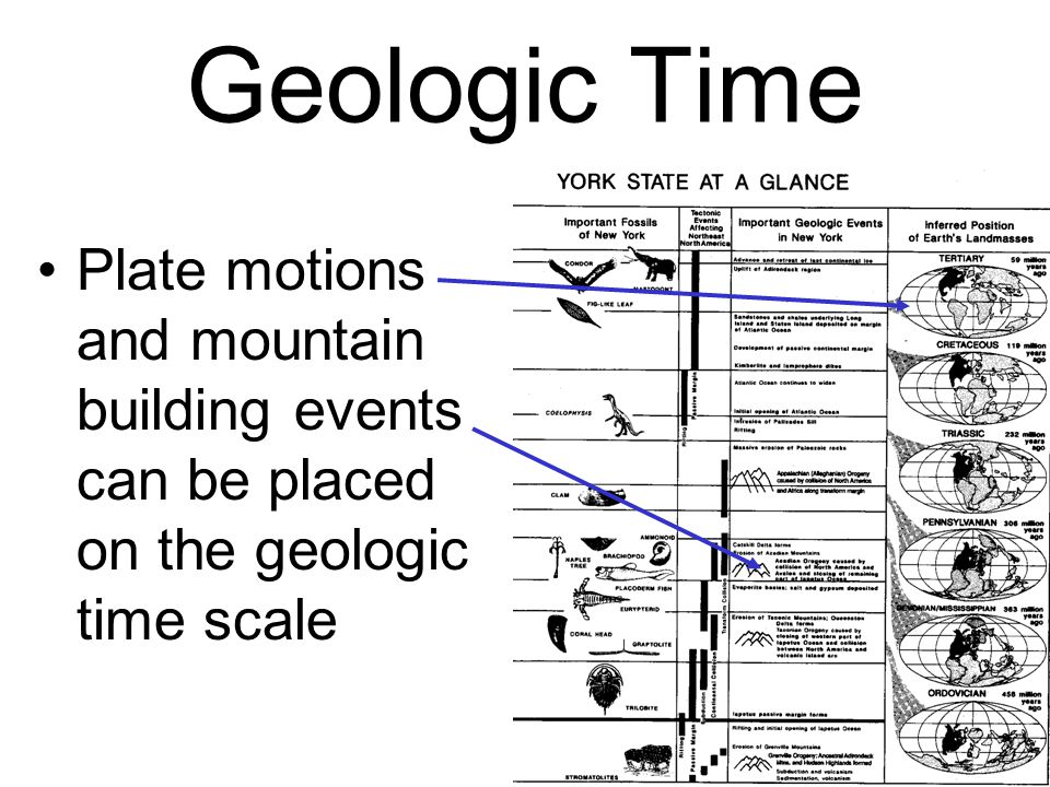 Geologic Time Plate motions and mountain building events can be placed on the geologic time scale