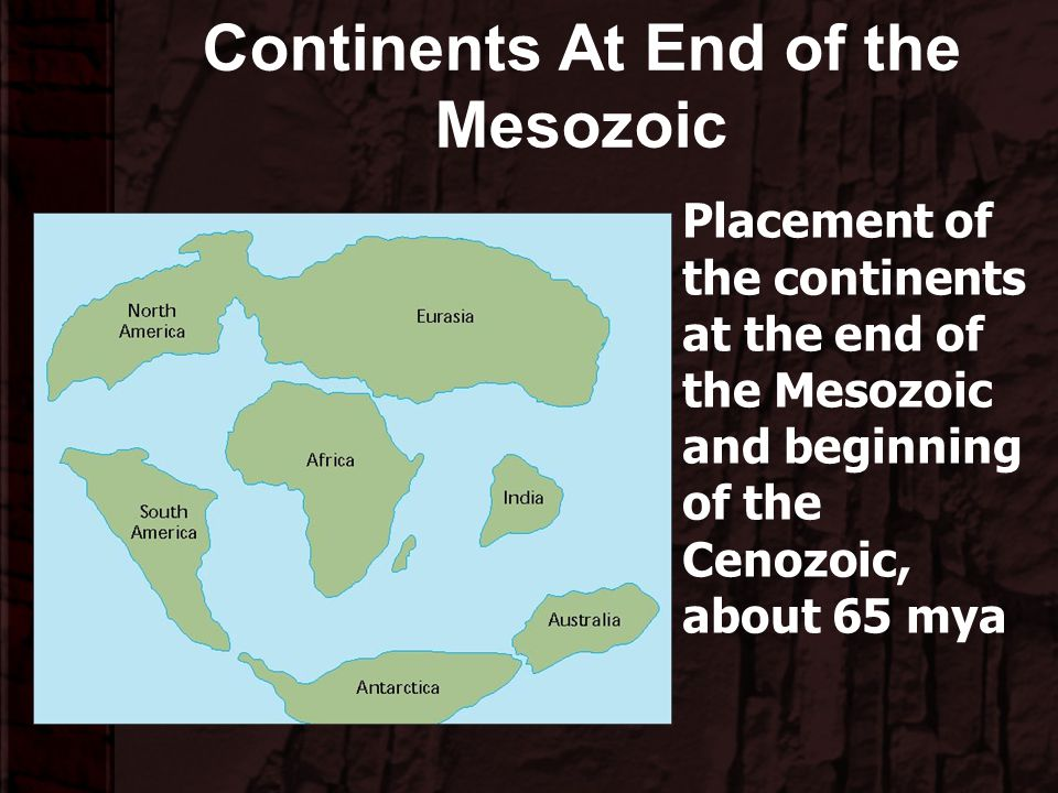 Continents At End of the Mesozoic