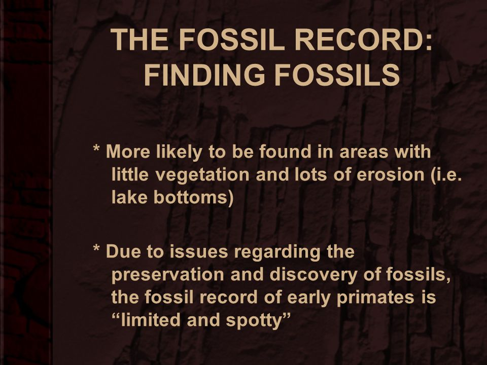 THE FOSSIL RECORD: FINDING FOSSILS