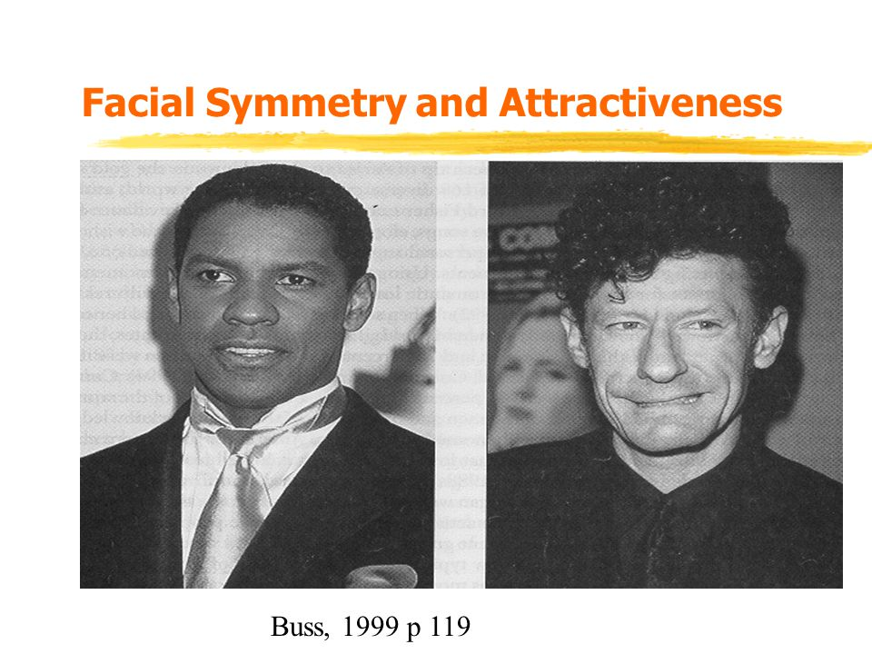 Facial Symmetry and Attractiveness