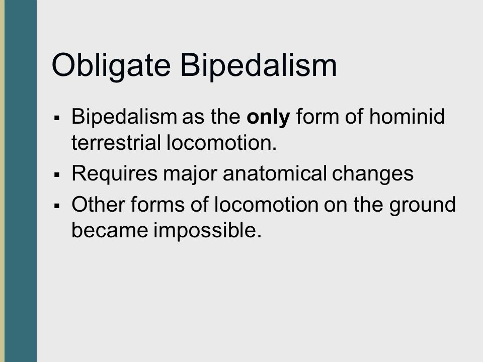 Obligate Bipedalism Bipedalism as the only form of hominid terrestrial locomotion. Requires major anatomical changes.