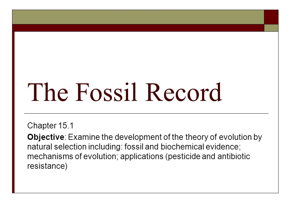 The Fossil Record Chapter 15.1