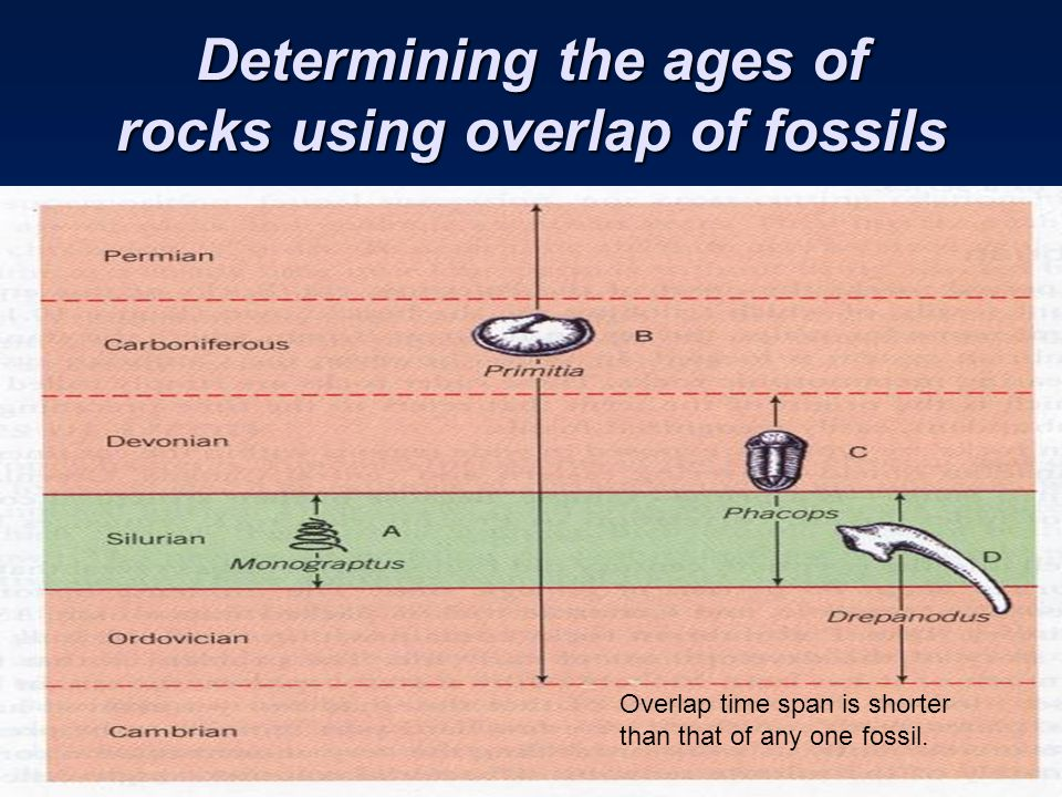 Determining the ages of rocks using overlap of fossils
