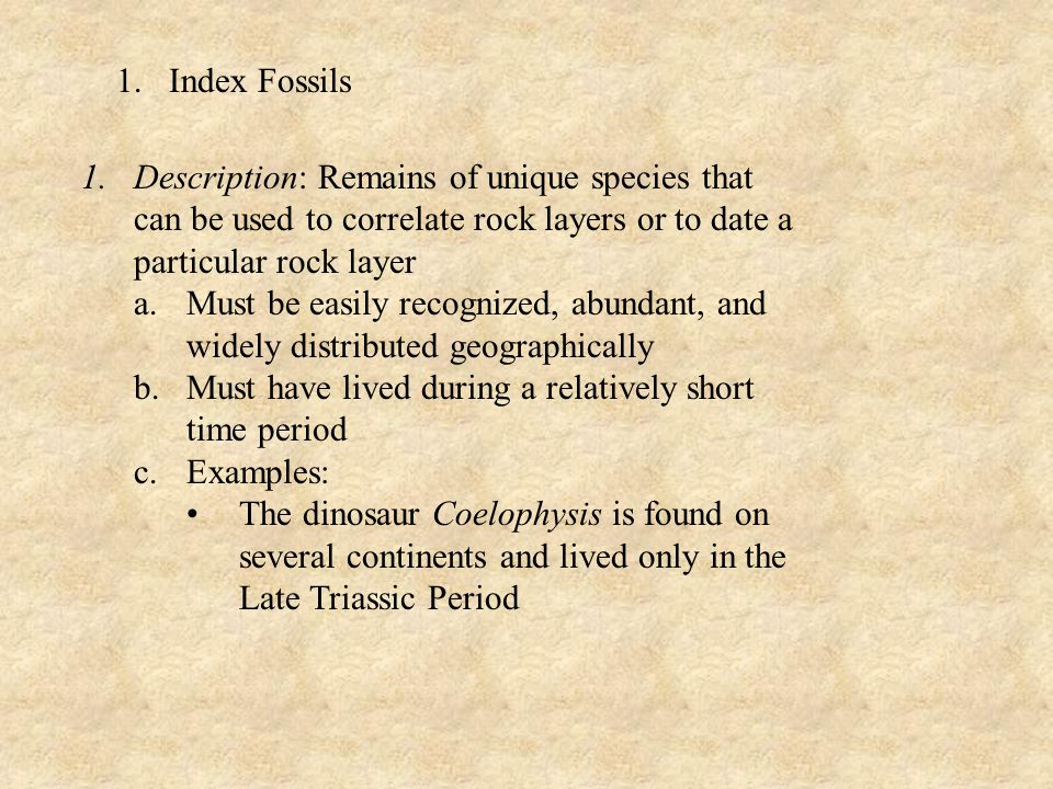 Index Fossils Description: Remains of unique species that can be used to correlate rock layers or to date a particular rock layer.