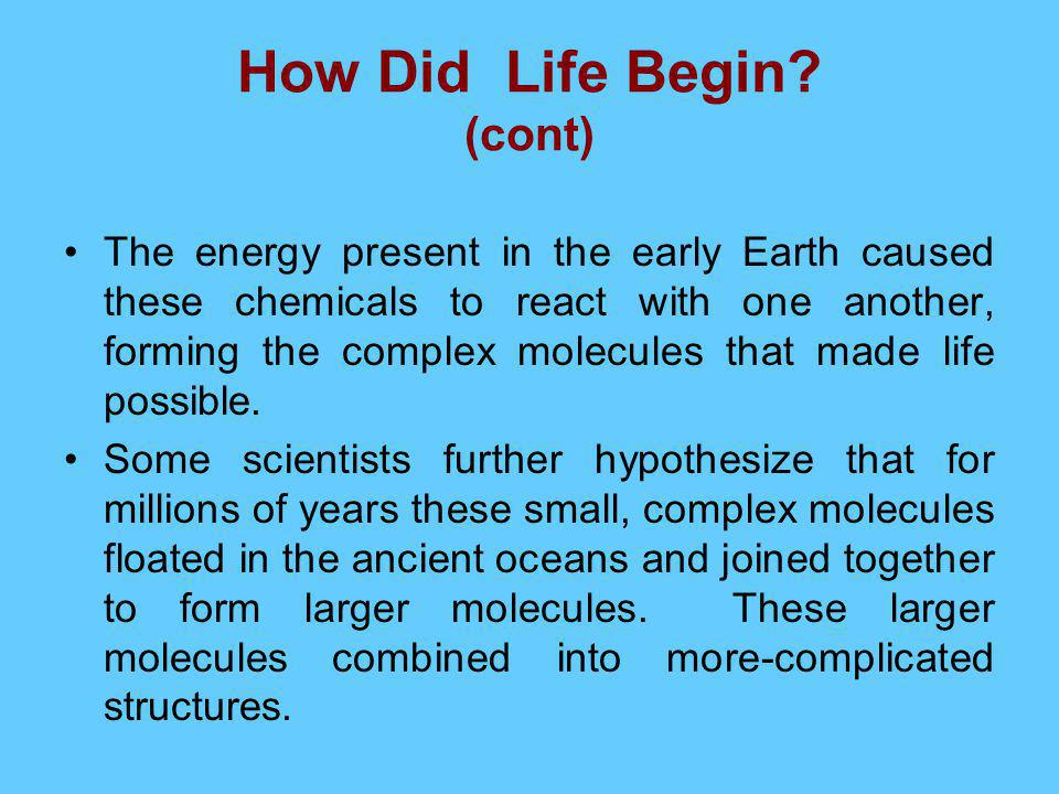 How Did Life Begin (cont)
