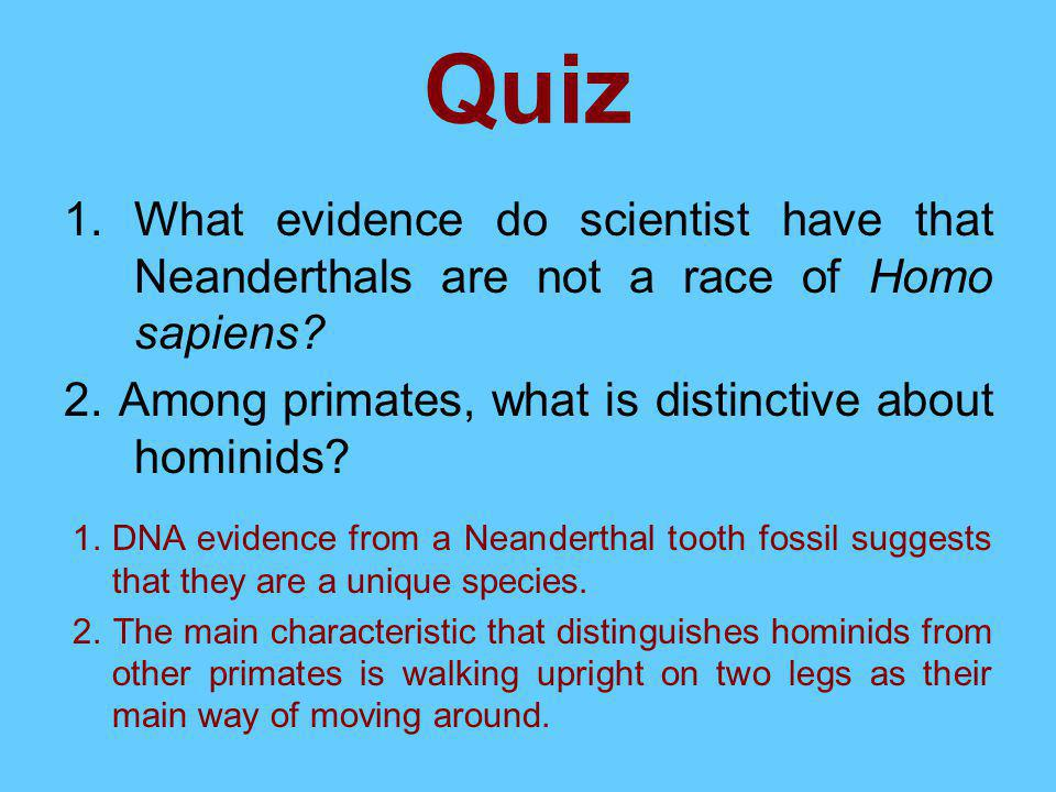 Quiz What evidence do scientist have that Neanderthals are not a race of Homo sapiens 2. Among primates, what is distinctive about hominids