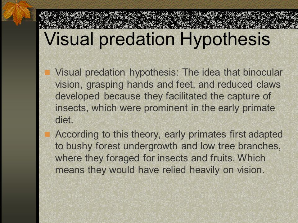 Visual predation Hypothesis