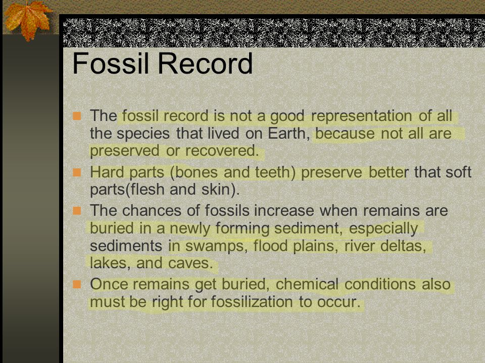 Fossil Record The fossil record is not a good representation of all the species that lived on Earth, because not all are preserved or recovered.