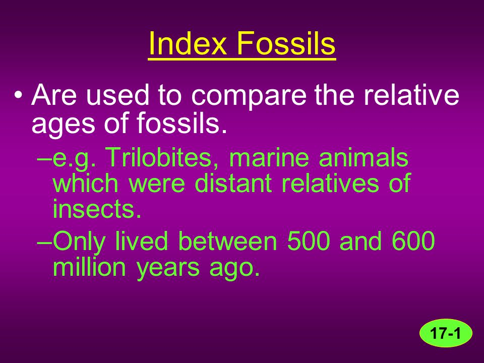 Index Fossils Are used to compare the relative ages of fossils.