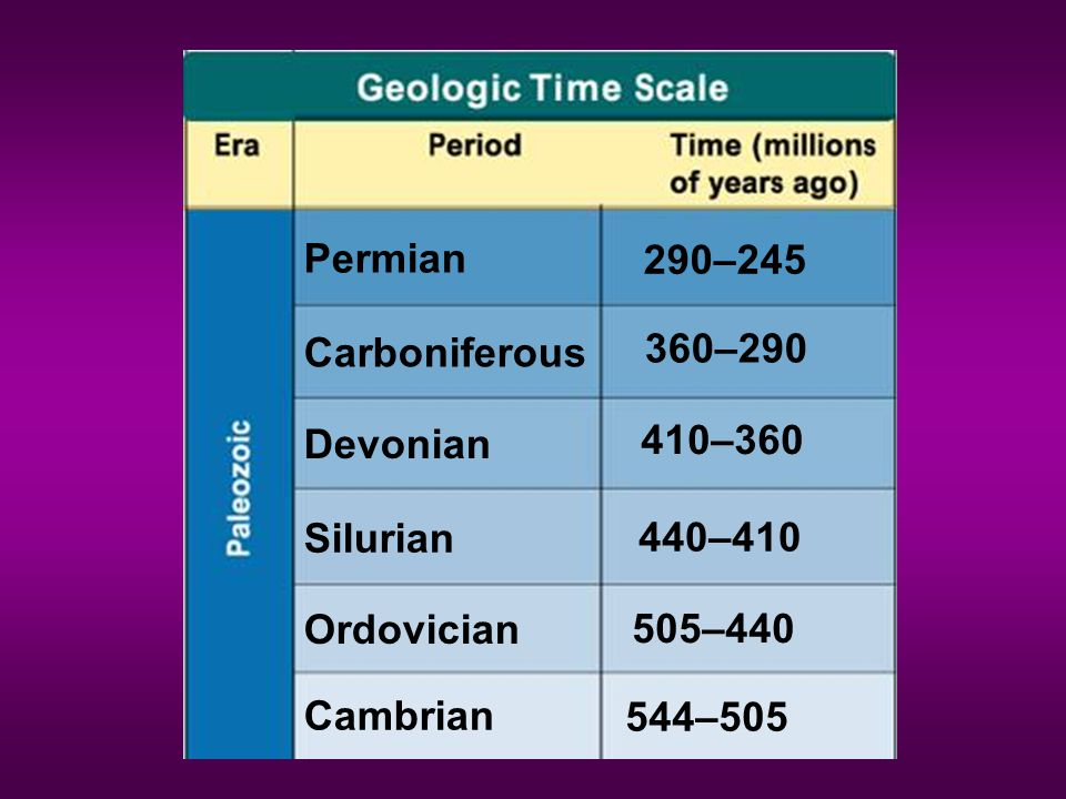 Geologic Time Scale Permian 290–245 360–290 Carboniferous 410–360