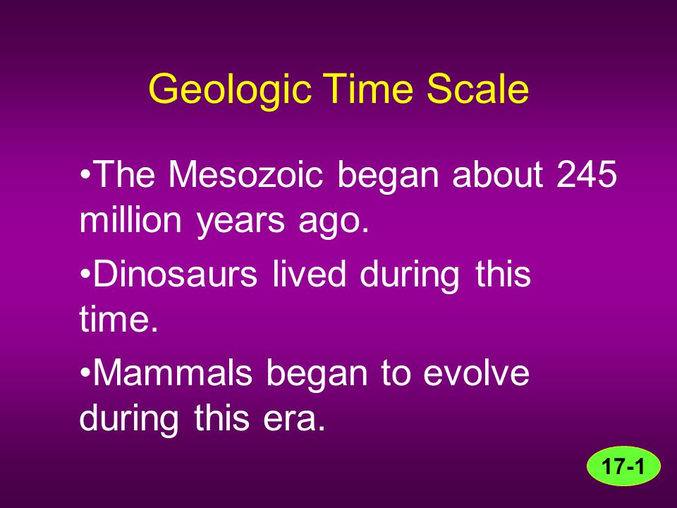 Geologic Time Scale The Mesozoic began about 245 million years ago.
