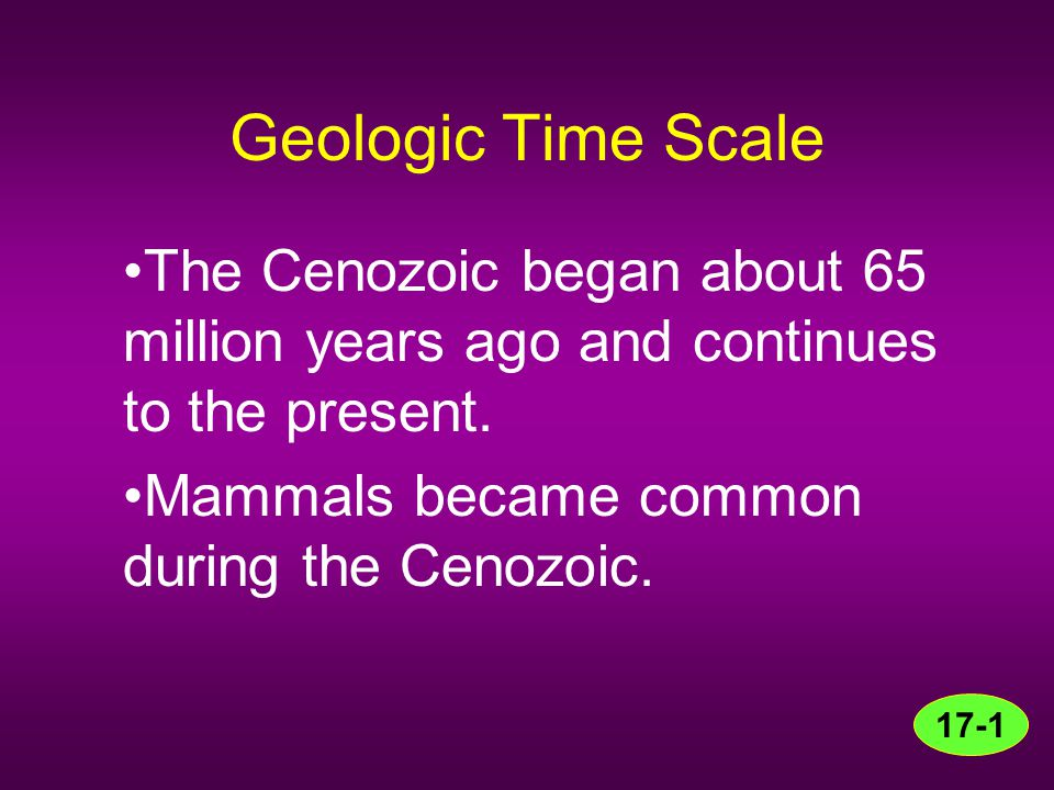 Geologic Time Scale The Cenozoic began about 65 million years ago and continues to the present. Mammals became common during the Cenozoic.