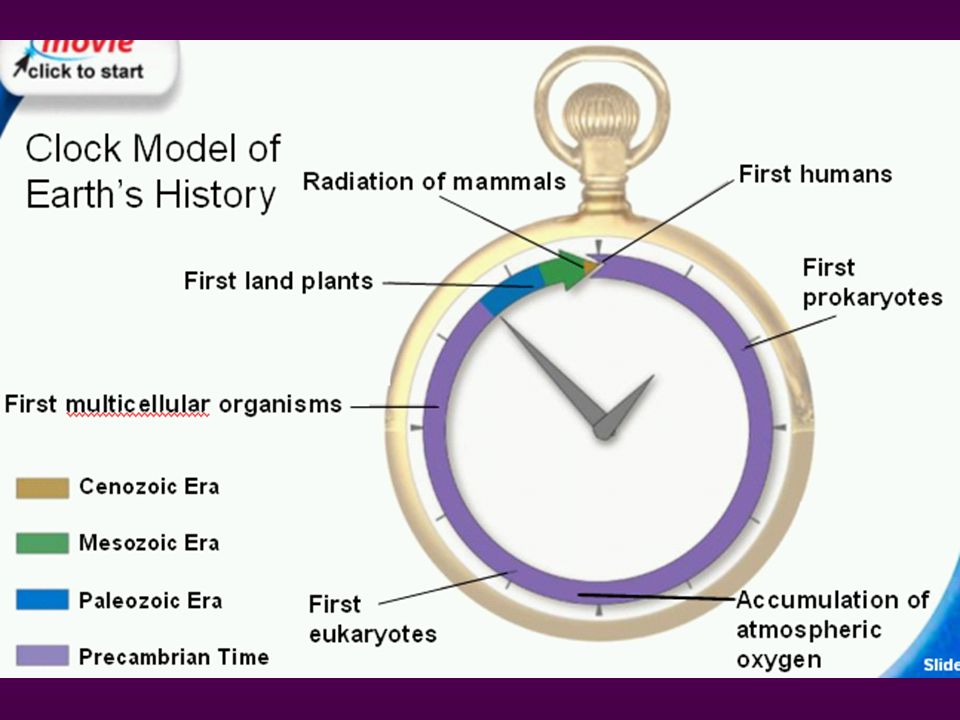 Earth's history is often compared to a familiar measurement, such as the twelve hours between noon and midnight.