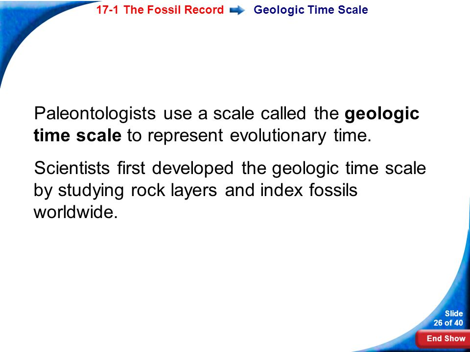 Geologic Time Scale Paleontologists use a scale called the geologic time scale to represent evolutionary time.