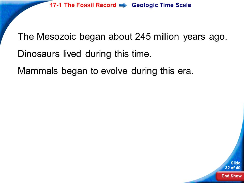 The Mesozoic began about 245 million years ago.