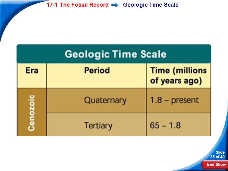 Geologic Time Scale The basic units of the geologic time scale after Precambrian Time are eras and periods.