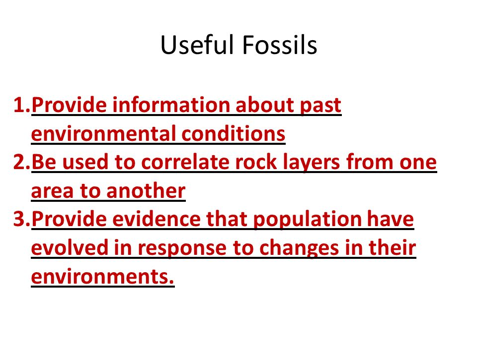 Useful Fossils Provide information about past environmental conditions