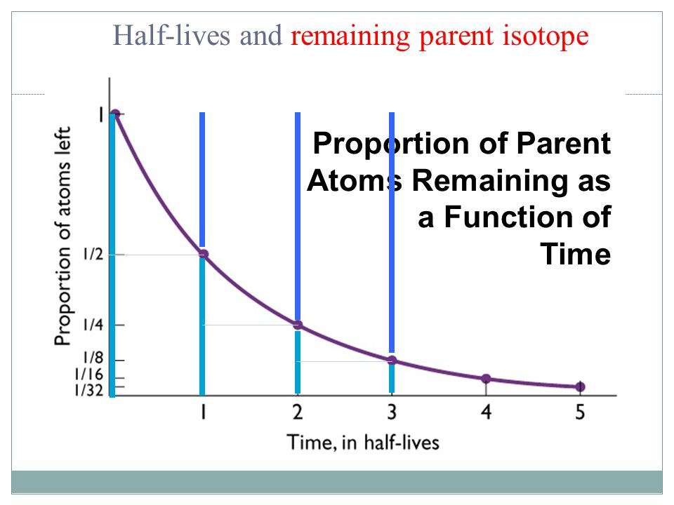 Proportion of Parent Atoms Remaining as a Function of Time