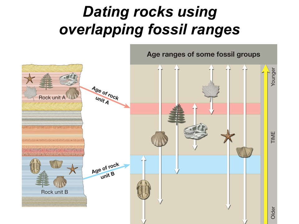 dating rocks by overlapping fossil range