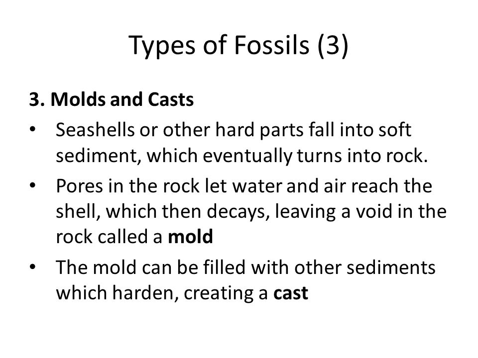 Types of Fossils (3) 3. Molds and Casts